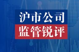 【沪市公司监管锐评】透析市场纷繁现象本质