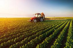 1.2万余家企业亮相第十八届中国国际农产品交易会