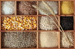 贵州粮食产量连续9年稳定在千万吨以上
