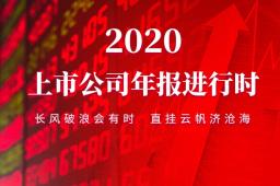 【2020年报专题】上市公司年报进行时