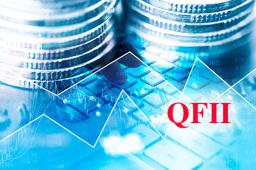 QFII最新持仓曝光 24只个股成海外长线资金新宠
