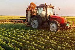 山东省委书记:增强种业自主创新能力和综合竞争力 努力推动现代种业高质量发展