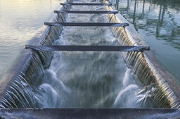 水利部:郑州郭家咀水库抢险工作仍在紧张进行