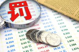 挪用基金资产 知名私募基岩投资再领罚单