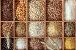 市场监管总局召开推进粮食市场秩序专项整治电视电话会议