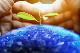中共中央办公厅 国务院办公厅印发《关于推动城乡建设绿色发展的意见》