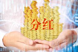 金达莱2020年净利同比增逾五成 拟10派10元